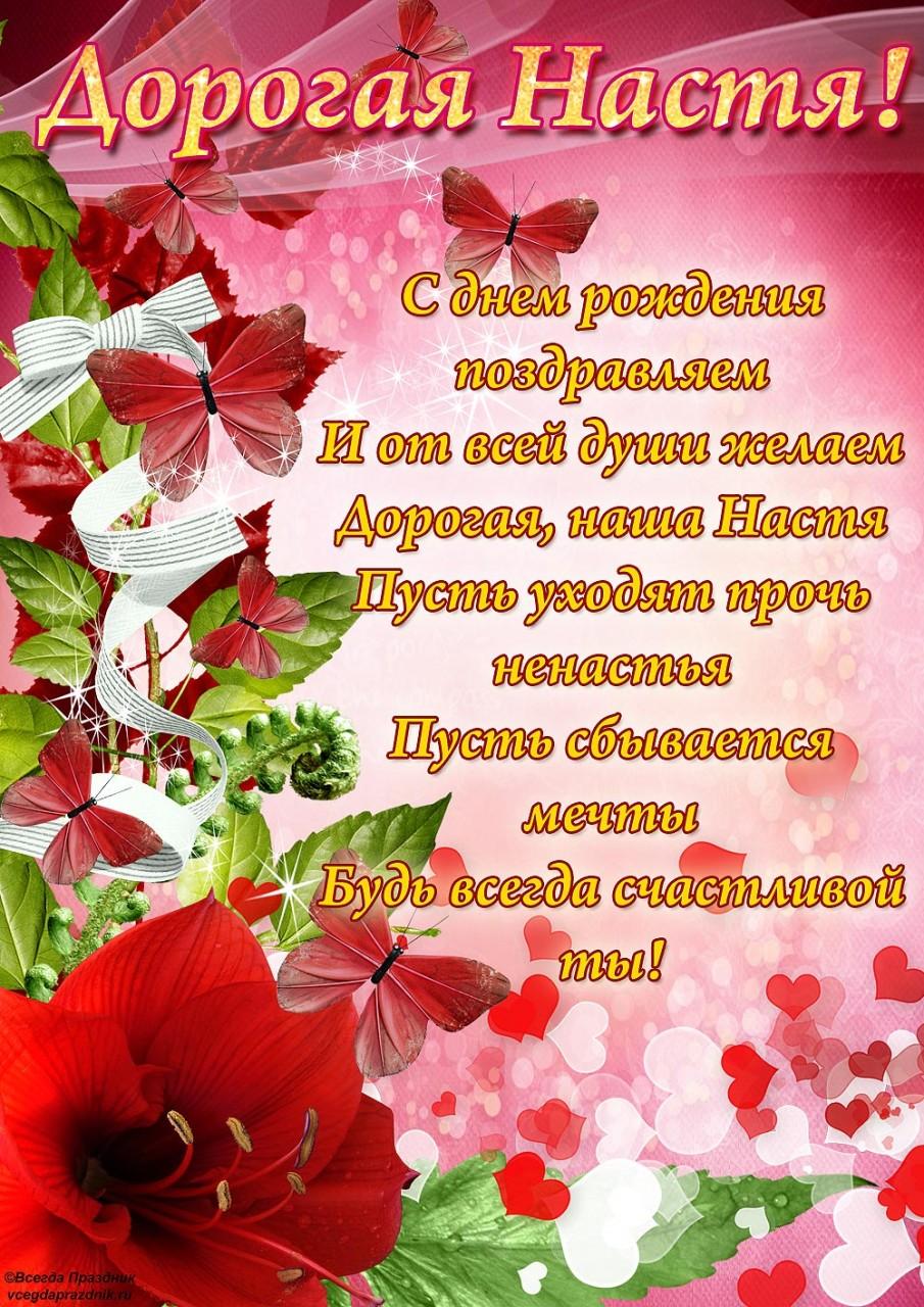 Что за цветок адонис 39