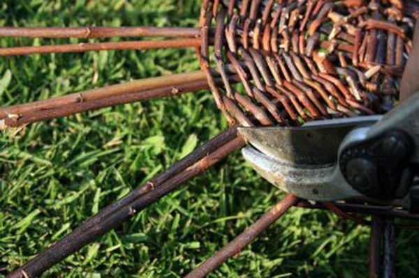 Для формирования стенок корзины вам также понадобятся толстые ивовые прутья. Их вставьте по одному в уже имеющиеся плетения вокруг крупных прутьев дна. Концы последних срежьте секатором.