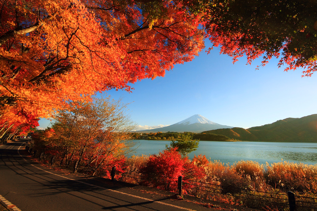 Картинки по запросу красивые картинки природы осень
