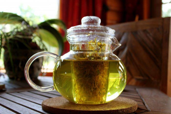 Чай, который разрушает раковые клетки за 2 дня