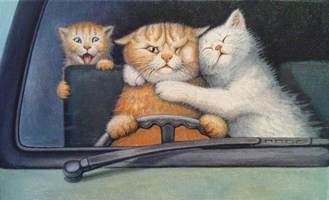 14. Кошки способны преодолевать огромные расстояния, чтобы добраться до дома животные, коты, факты