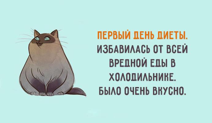 Днем рождения, открытки о похудении с юмором