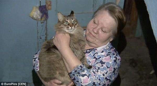 Кошка согревала младенца-подкидыша