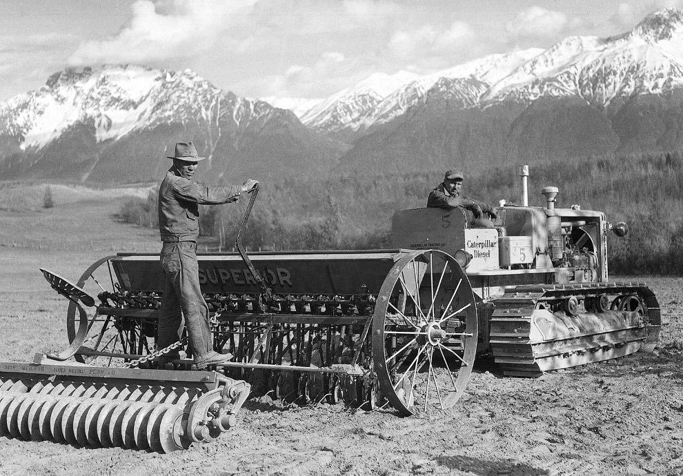 Аляска развивается. Новые фермеры