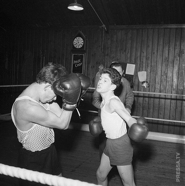 Sex women amateur boxing famous