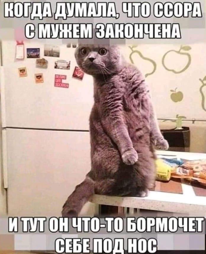 https://mtdata.ru/u30/photo8B72/20736481561-0/original.jpeg#20736481561