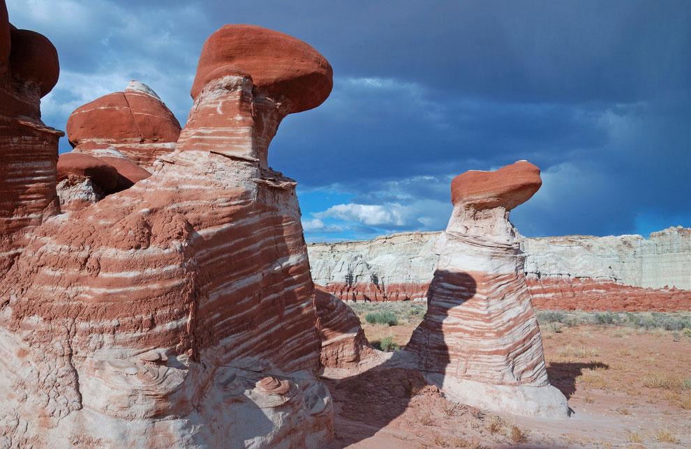 Каменные грибы из Аризоны