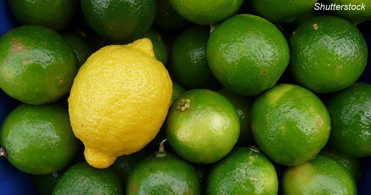 Лимон или лайм: что лучше Ð´Ð»Ñ Ð²Ð°ÑˆÐµÐ³Ð¾ здоровьÑ?