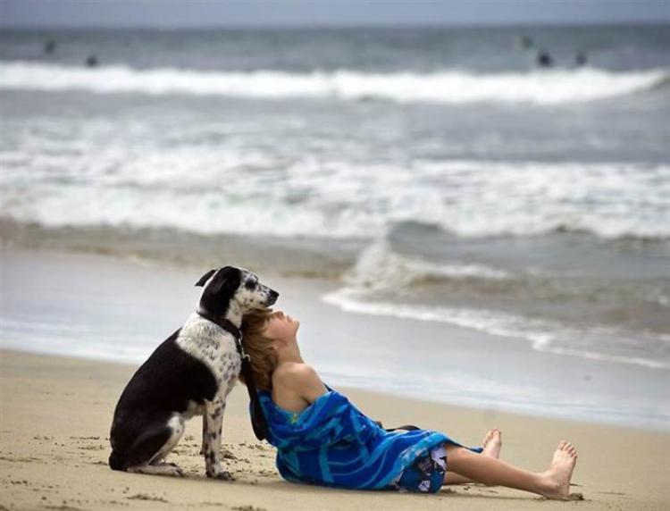 Не прогадал, когда взял пса у хозяев, которые не могли больше о нем заботиться…