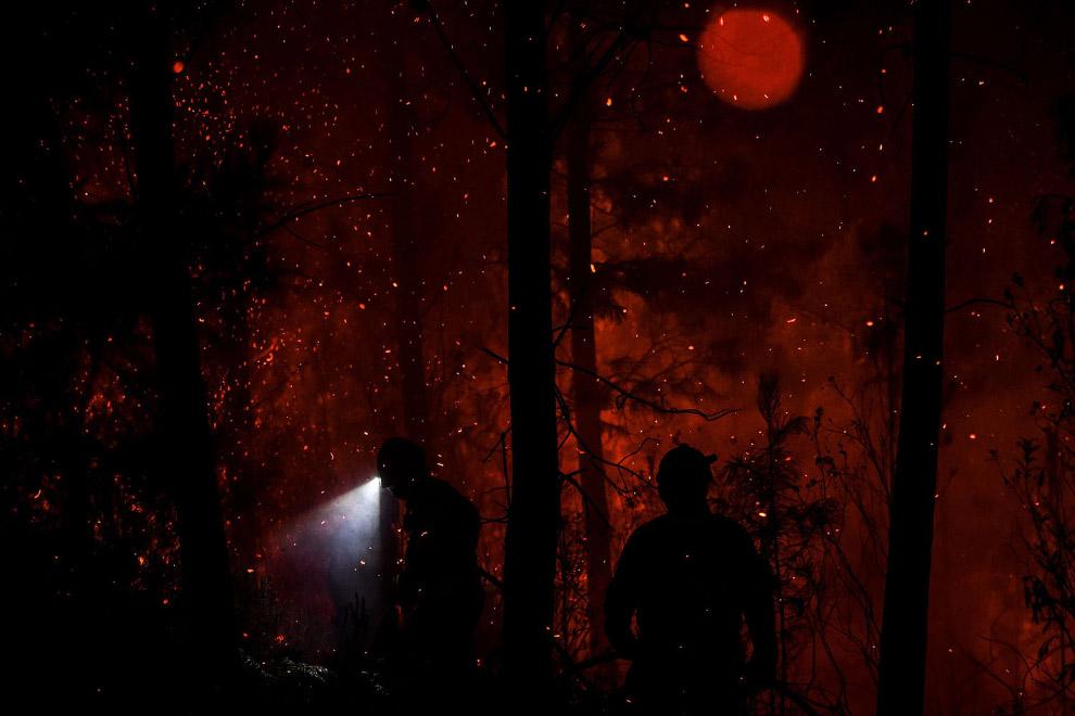 Как тушат лесные пожары в Португалии