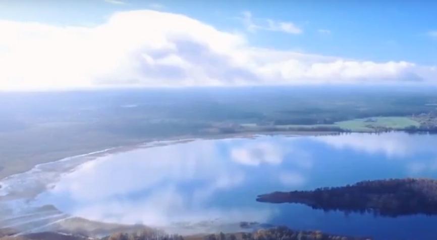 Рыбалка, лес, пляж: топ чистых озер Ленинградской области, где можно отдохнуть Общество