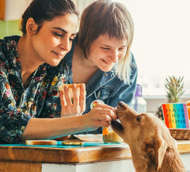 Кости со стола и другая еда, которой запрещено кормить собак домашние животные,наши любимцы