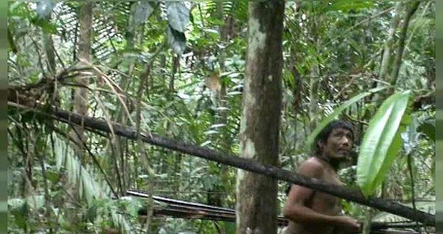 В долине Амазонки обитает почти 80 племен, которые не знают, что такое цивилизация. Самое враждебное из них - кавахива, живущее в бразильском штате Мату-Гросу.