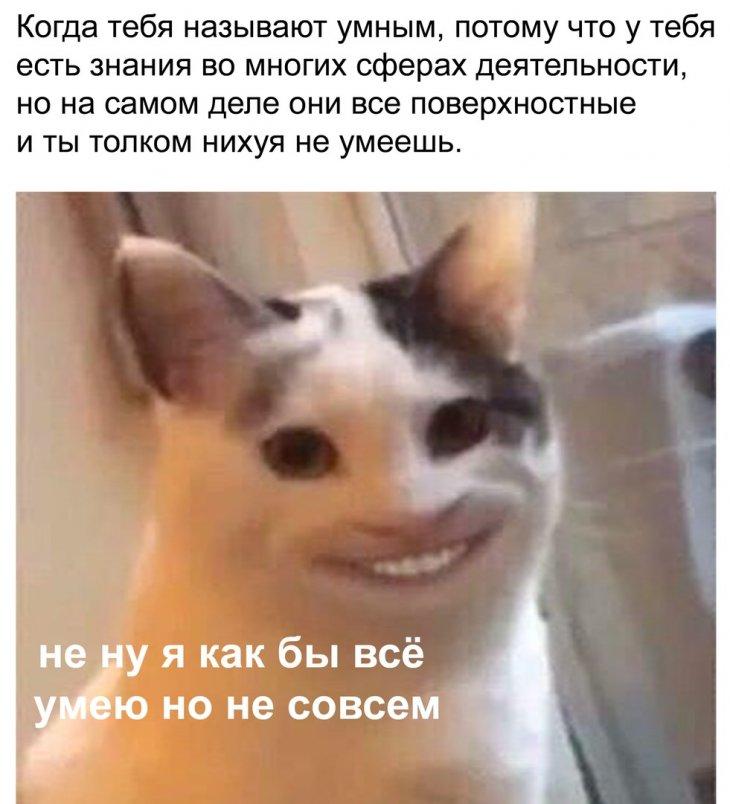 Подборка актуальных мемов и смешных картинок