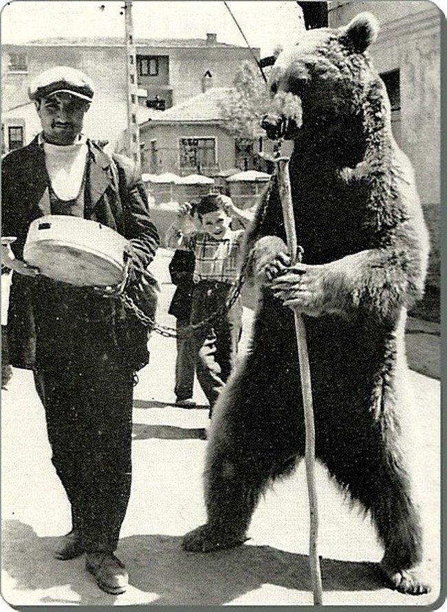 Уличный цирк с медведем Весь Мир в объективе, ретро, старые фото
