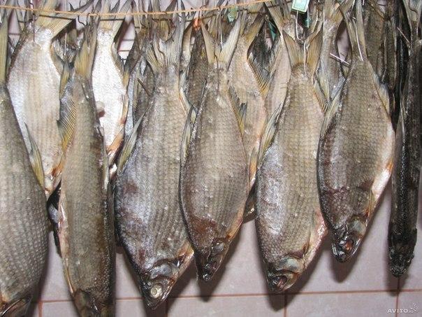 Как быстро посолить рыбу дома, на даче, на рыбалке и в походе