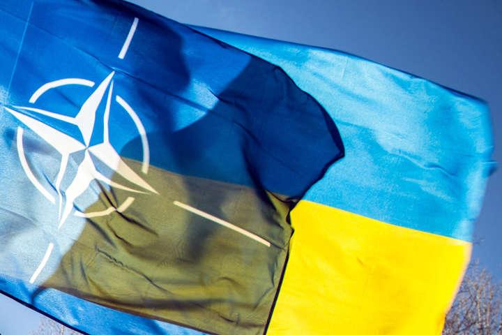 В Киеве нашли виновного в том, что страна до сих пор не в НАТО
