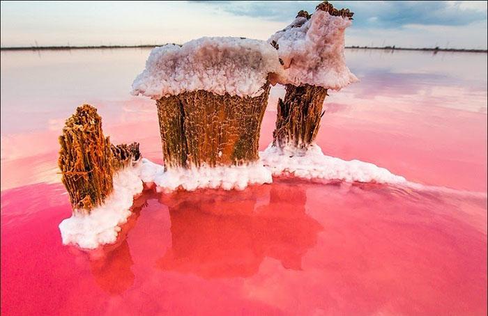 Великолепие крымского «гнилого моря» 25 фотографий озера Сиваш интересное