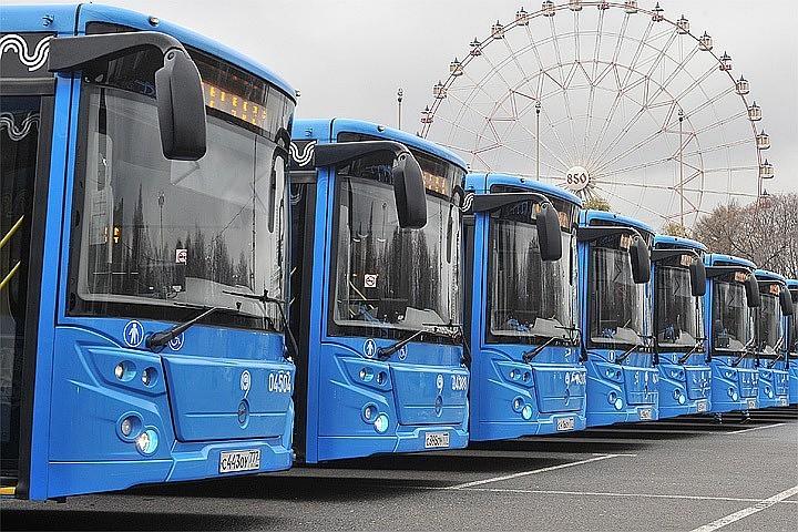 Во время ЧМ-2018 у въездов в Москву будут дежурить резервные автобусы