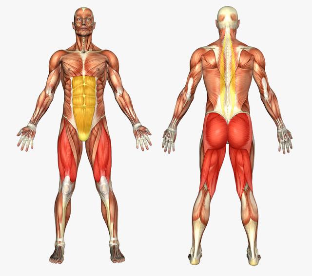 18 упражнений для укрепления духа и тела здоровье,упражнения