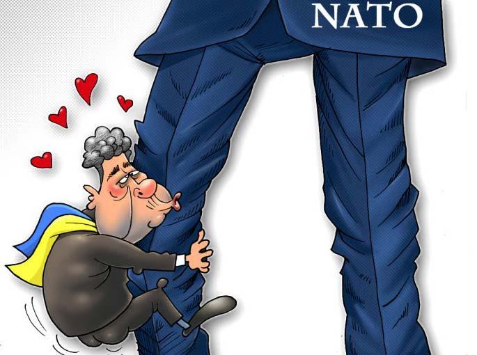 Украину не берут в НАТО