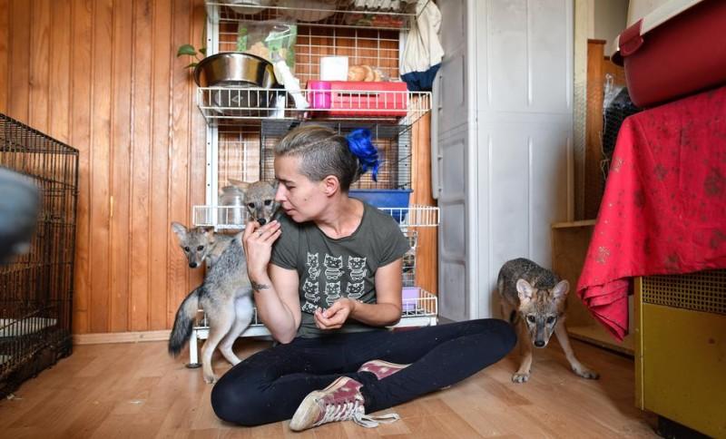 В Хорватии подброшенные в приют щенки внезапно оказались не собаками