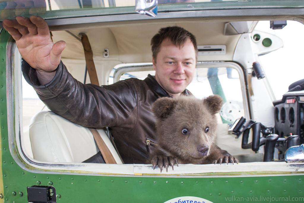 Андрей Иванов обучил летать медведя )
