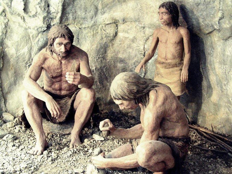 В меню неандертальцев из португальской пещеры входили крабы и мидии