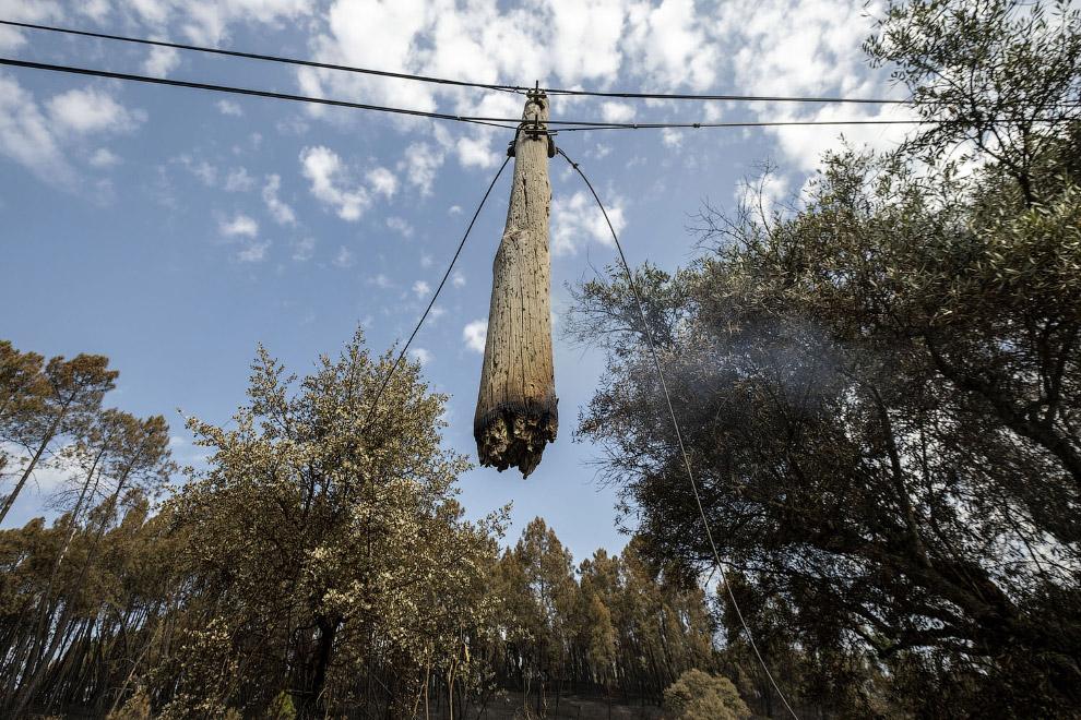 APTOPIX Portugal Wildfires