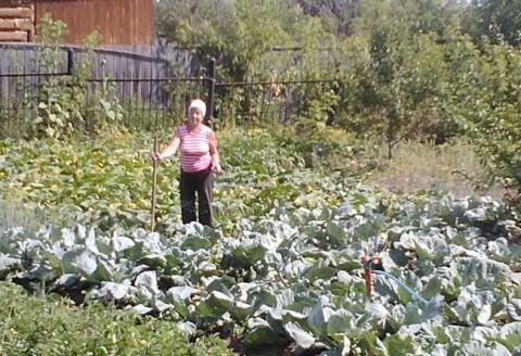 Необычный случай: Огонек в огороде.
