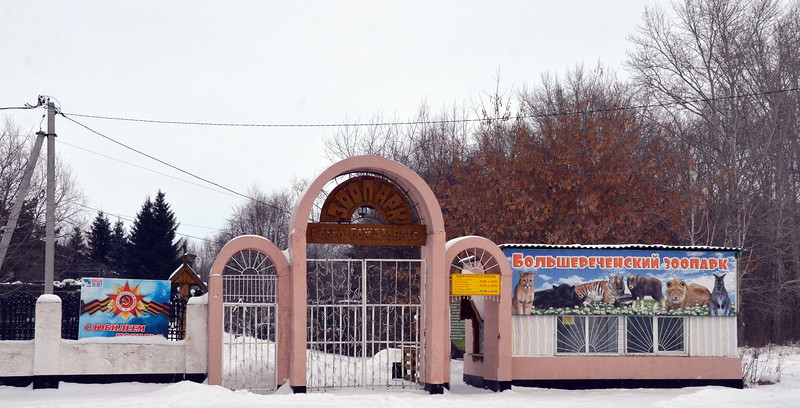 Новости Большереченского зоопарка )