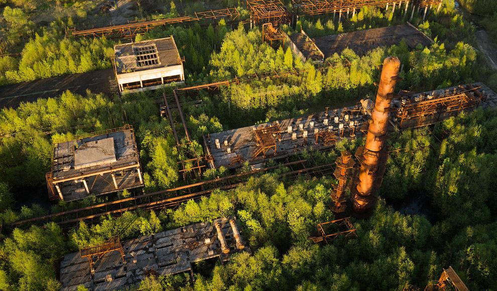 Заросший нефтеперерабатывающий завод в Ленинградской области