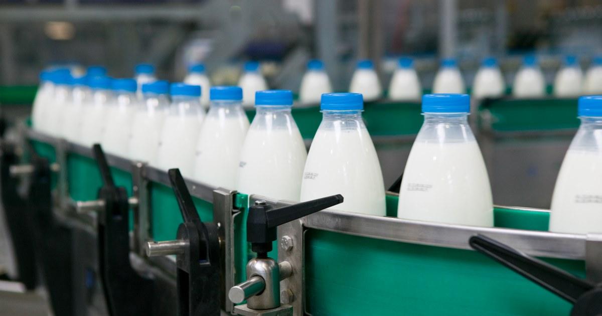 Молочные продукты с растительными жирами запретили маскировать