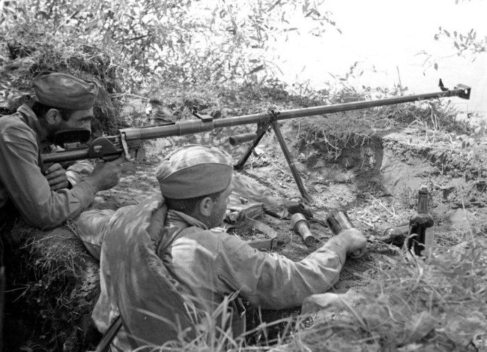 Противотанковое ружье ПТРД. | Фото: e-wiki.org.