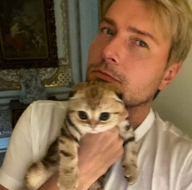 В каких апартаментах живут Николай Басков вместе со своей кошкой