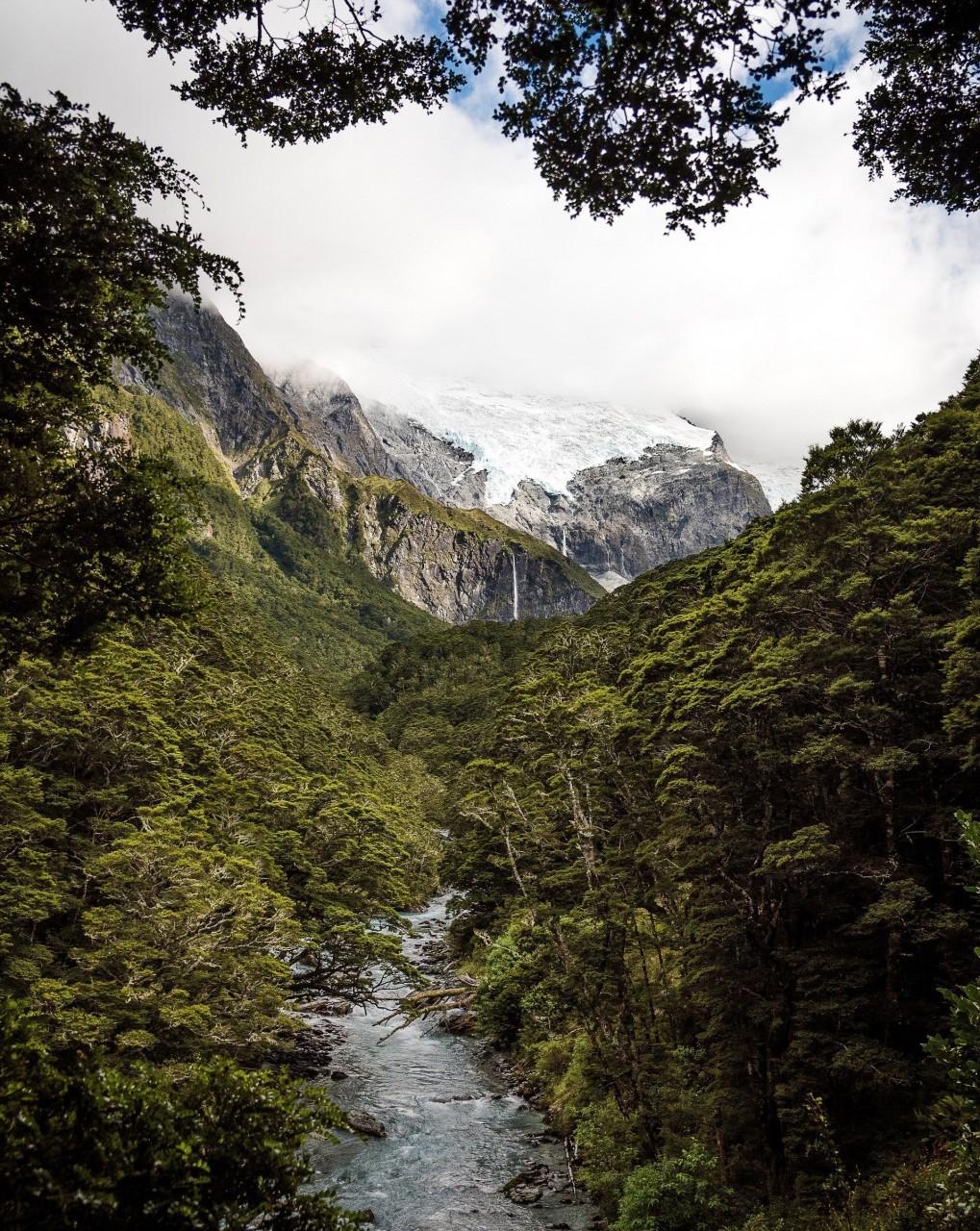 В Новой Зеландии есть места, напоминающие доисторический мир, - как на этой фотографии. Гора Аспиринг, ледник Роба Роя красивые места, красота, ледник, ледники, природа, путешественникам на заметку, туристу на заметку, фото природы