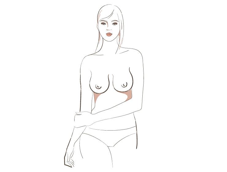 женская грудь виды и типы фото