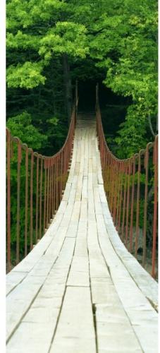 фотообоев канатный мост