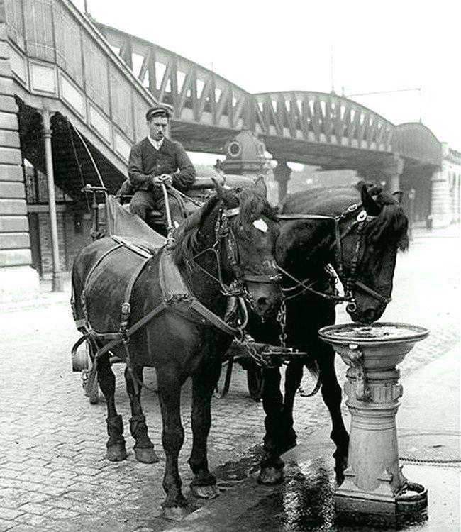 Питьевой корыто для лошадей. Париж, около 1900 года Весь Мир в объективе, ретро, старые фото