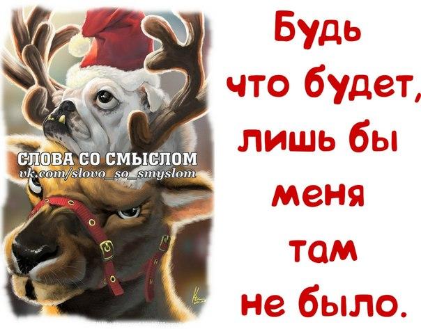 3416556_image_3_ (548x300, 28Kb)