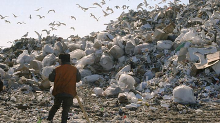 России грозит мусорный коллапс: В Счётной палате раскрыли неутешительные сроки россия