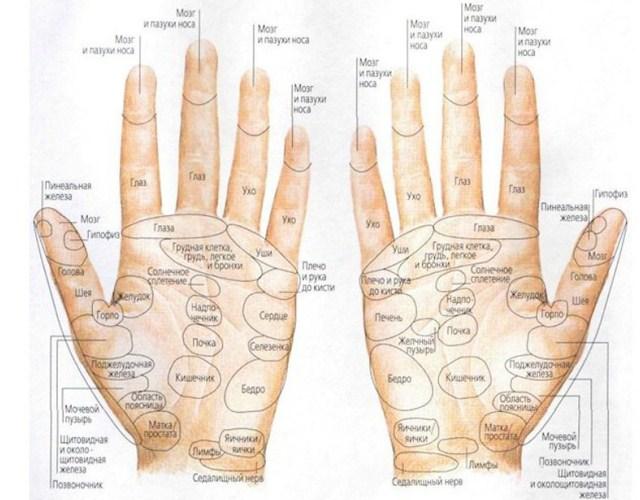 Рефлексология в действии - массируем пальцы - помогаем всему организму