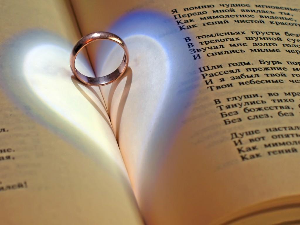 стихи соломоновой про любовь хочет сократить свои