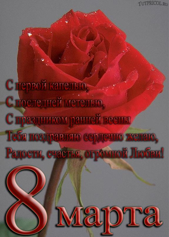 Сиф днем, христианские открытки поздравления с 8 марта
