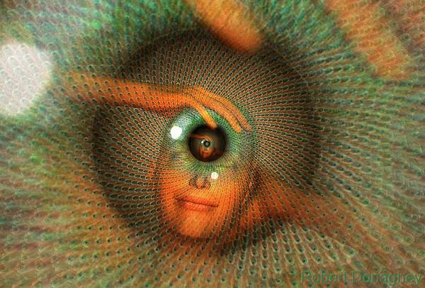 сайта как буддисты открывают третий глаз атмосферного воздуха может