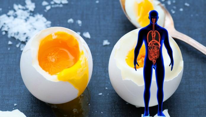 Всего 3 месяца такой диеты — и можно избежать рака, болезней сердца и Альцгеймера