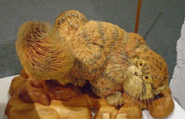 Сибиряк создаёт реалистичные скульптуры животных из кедровой стружки