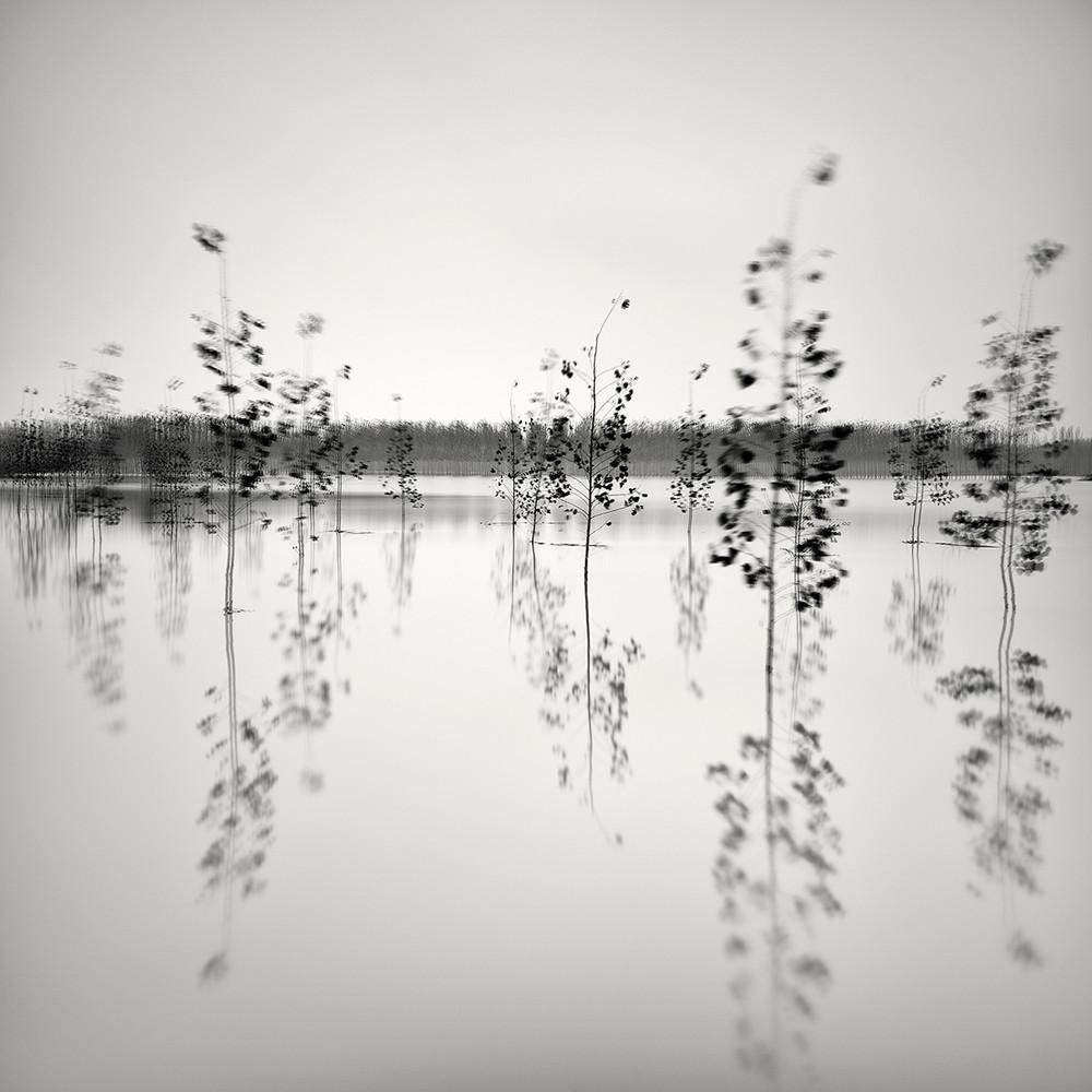 Cherno-belye-peyzazhnye-fotografii-Pera-Pellegrini 1