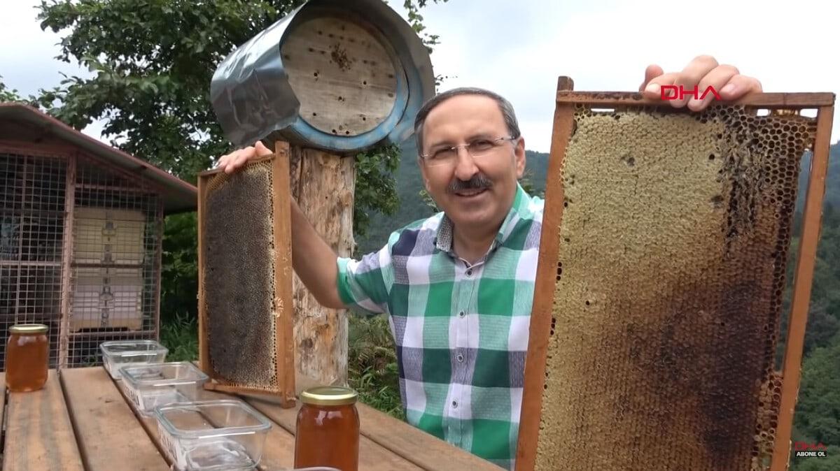 Медведи воровали мёд жителя Турции, но он схитрил и сделал их дегустаторами. Причём идеальными животные,жизнь,мед,медведи,юмор и курьезы