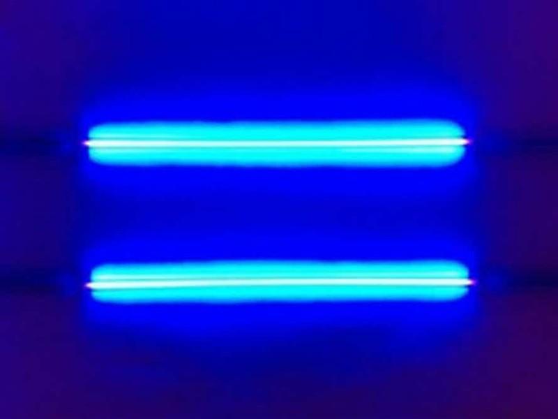 Некоторые люди могут видеть ультрафиолет интересно, познавательно, тело, факты